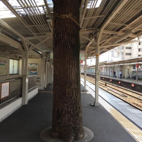 【号外出店必勝ナビ★知恵泉】その場所の特性を探す